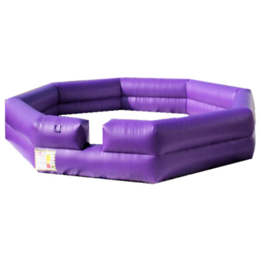 Gaga Ball Octaball inflatable interactive bounce house moonwalk party rental michigan